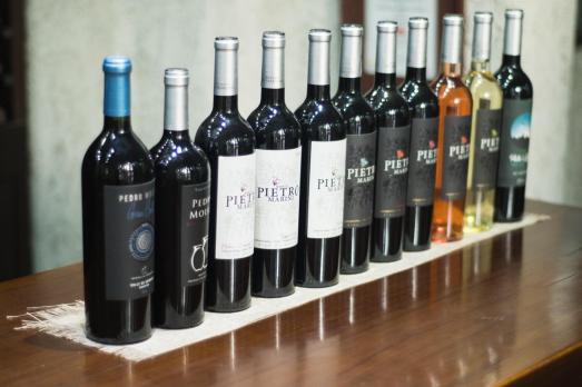 Degustacije vin v Argentin - vina vinske kleti El Transito