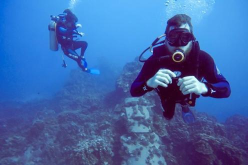 Plan potovanja za Velikonočni otok - potapljača ob moai pod vodo