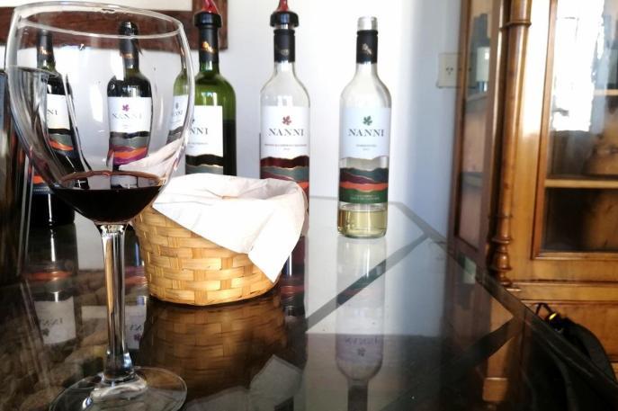Vinske degustacije v Argentini - degustacija v Nanni, Cafayate