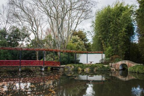 Vrt, urejen na kitajski način (kamnit in rdeč lesen most)