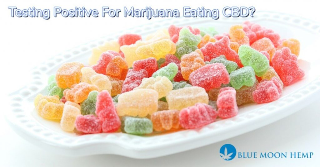 eating cbd infused gummies, hemp oil, are cbd gummies legal, cbd gummies drug test, what are cbd gummies, cbd gummies dosage