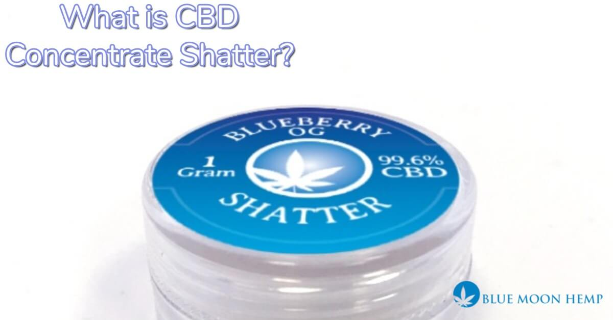 what is cbd concentrate shatter used for, what are the benefits of cbd concentrate shatter, is cbd concentrate shatter legal, buy cbd concentrate shatter online, what is cbd concentrate shatter,