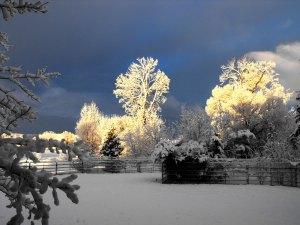 winterranchscene