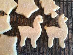 alpaca-cookies