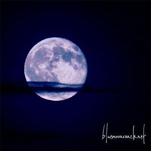 bluemoon77