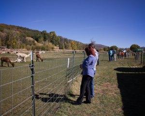 barn-days4