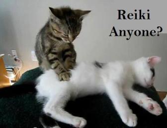 reiki-animals