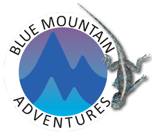 Blue Mountain Adventures