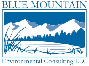 Blue Mountain Environmental Consulting