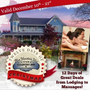 Blue Mountain Mist 12 Days of Christmas Graphic