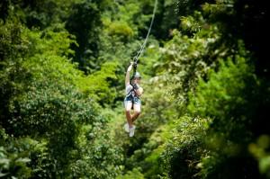 Ziplining through forestry