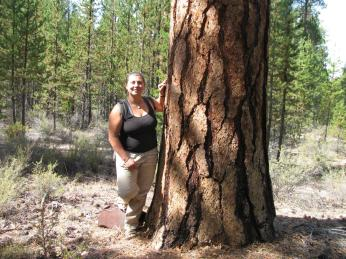 Jessy in Flat timber sale