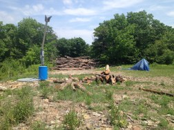 Harvested wood and park prep.