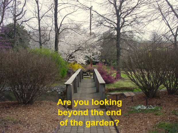 Are you looking beyond the end of the garden?