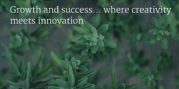 innovation14august