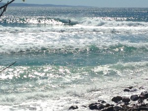 National Park a surfer on every wave.