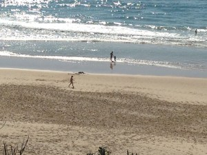 Sunshine Beach holidays have started for some.
