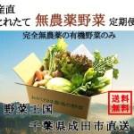 産直とれたて無農薬野菜の定期便【 タウンライフマルシェ 】