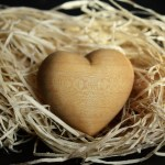 wooden heart in straw nest