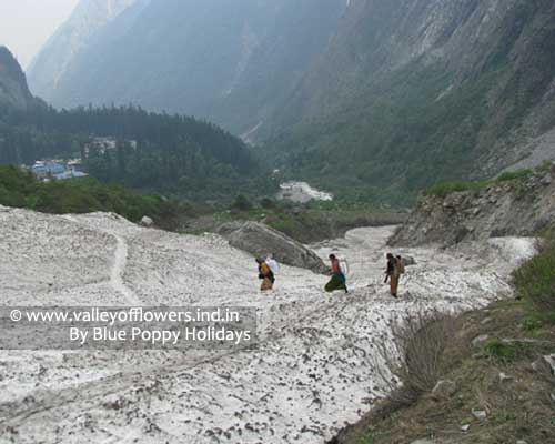 Frozen River near the entry gate of Valley of Flowers. In background you can see village Ghangaria