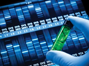 Genetic sequencing: looking for defects.