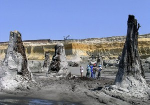 Hungarian Fossil Forests.