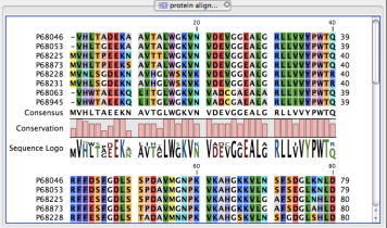 Typical sequence alignment.