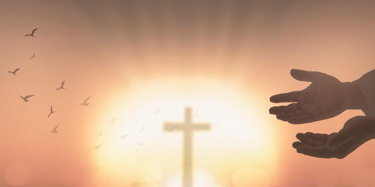 The Hope of the Gospel by Tom Walker