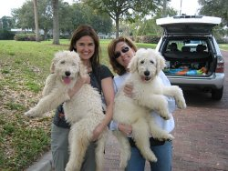 WILLOW_AND_KC_ORLANDO_FL