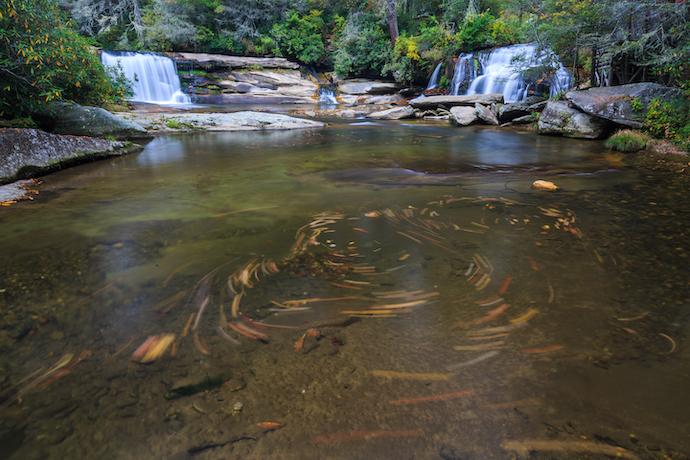 20 Western North Carolina Waterfalls - French Broad and Shoal Creek Falls