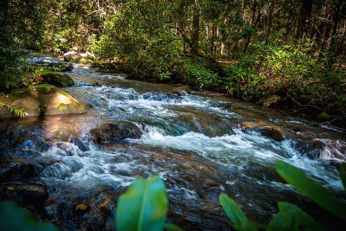 The Moccasin Creek Trail to Hemlock Falls, GA