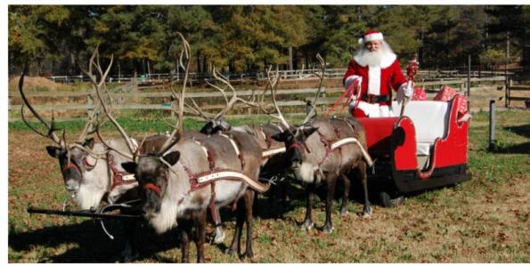 Santa and Reindeer at Pettit Creek Farms in Cartersville GA