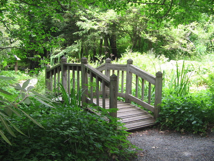 Things to Do in Boone Guide - The Blowing Rock