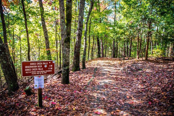 Hiking the Dukes Creek Falls Trail in Autumn