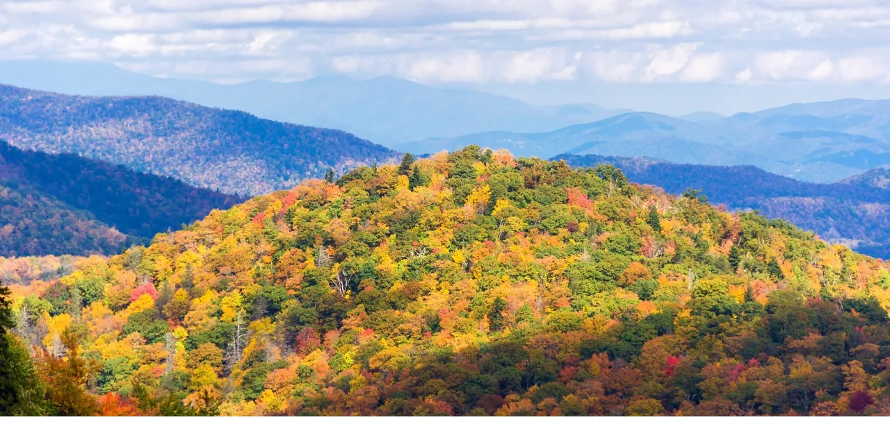 Pisgah National Forest Hiking Trails