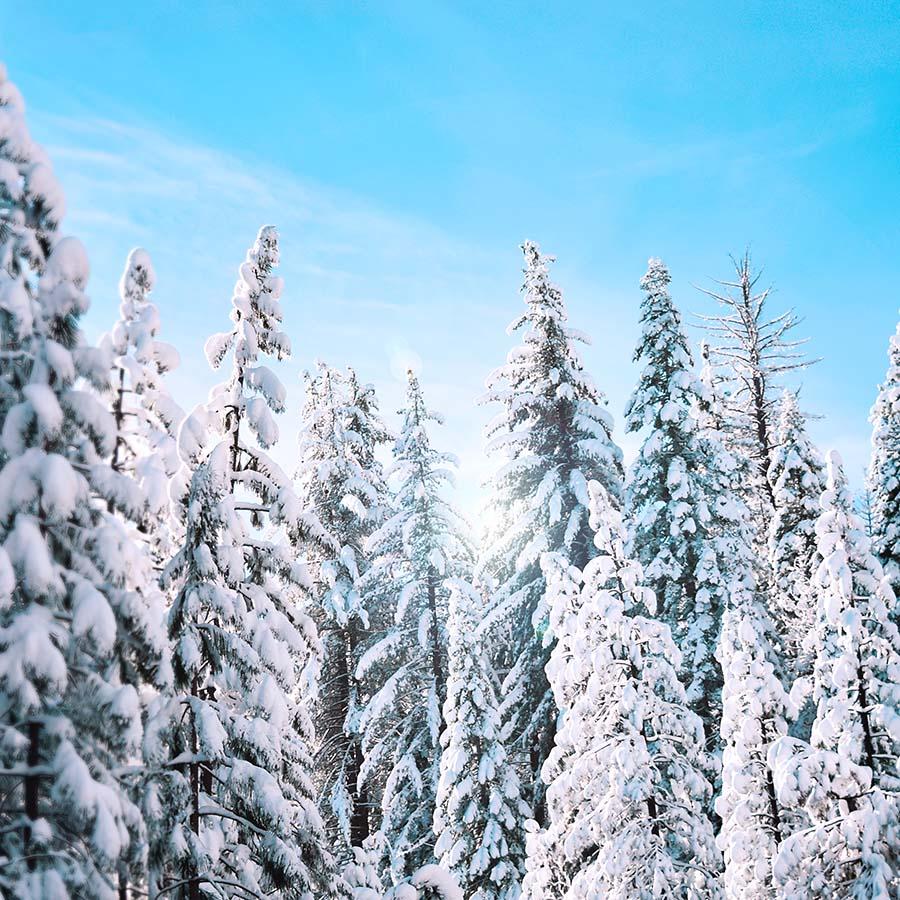 Yoga snowboarding ski retreat french alps chamonix mont blanc relaxation spa hiking