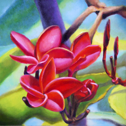 "Frangipani sisters, 12""x12"", acrylic on canvas, © Donna Grandin, 2011. Sold"