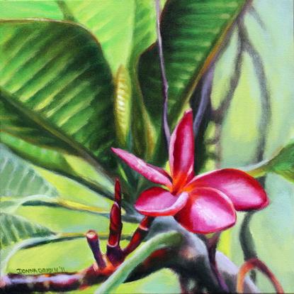 "Frangipani beauty, 12""x12"", acrylic on canvas, © 2011 Donna Grandin. Sold"