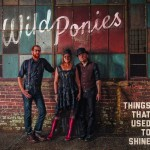 Wild Ponies - Things That Used To Shine' (300dpi)