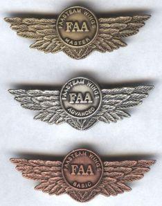 FAASTeam_Wings