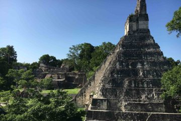 Tikal Ruins Guatemala Blue Sky and Wine
