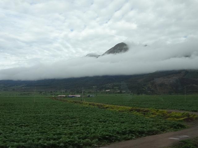Window view, Machu Picchu by train, Peru, Blue Sky and Wine
