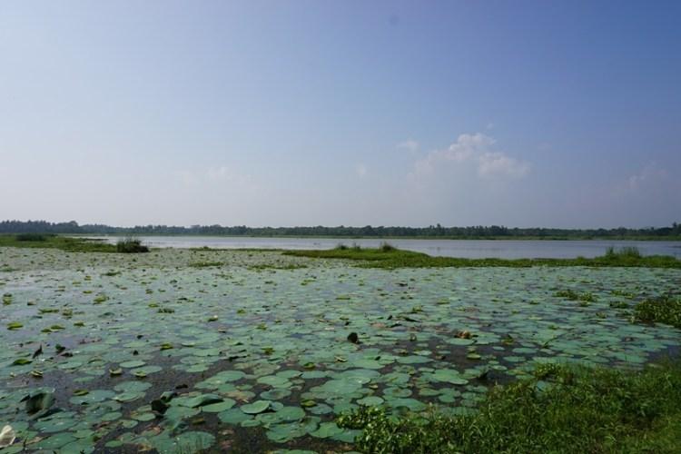 Tissa Lake, Tissamaharama, Sri Lanka, Blue Sky and Wine