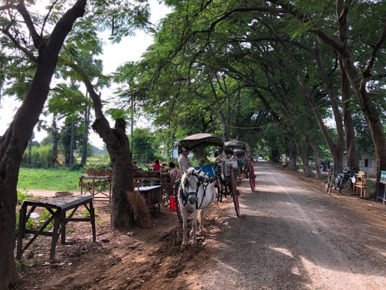 Inn Wa horse cart tour
