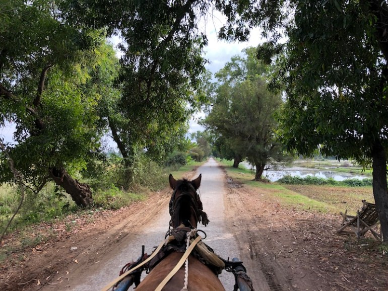 Inn Wa horse cart