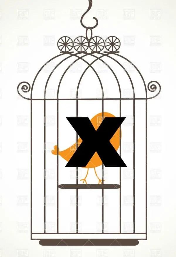 no bird in a birdcage