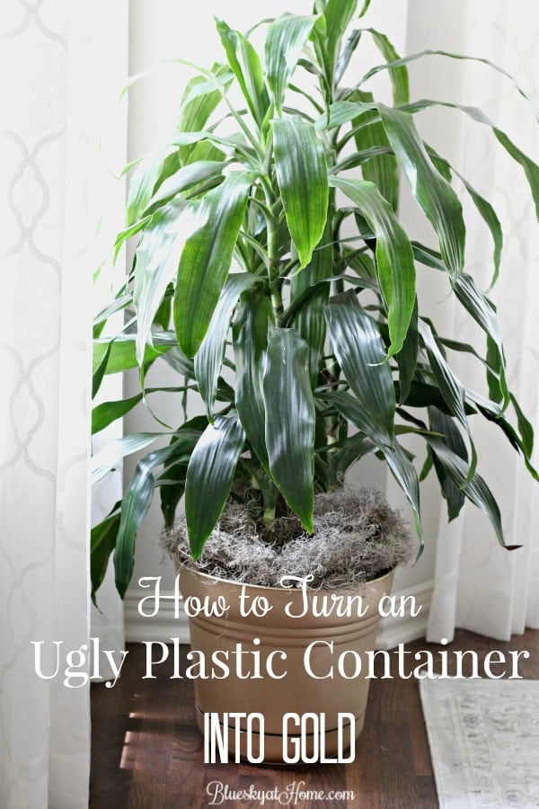 How to Turn an Ugly Plastic Container into Gold. When you can't find the item you need for a home decor project, don't despair. You can turn even an ugly planter into the perfect container with spray paint. BlueskyatHome.com