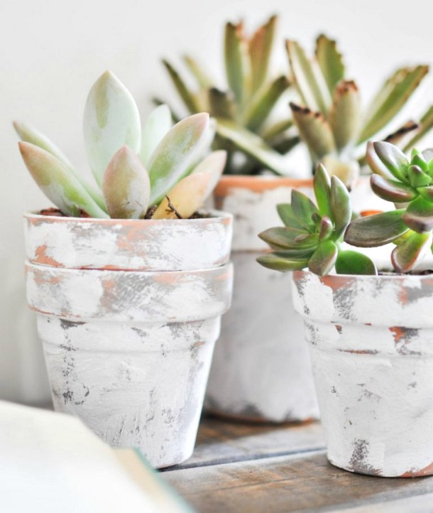 painted terra cotta pots
