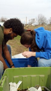 Jamhal (intern) and Tiffany (volunteer) look for worms | Blue Skys Farm, Cranston, Rhode Island