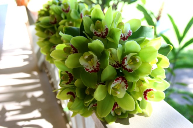 green cymbidium orchids: Blue Sky Weddings Maui
